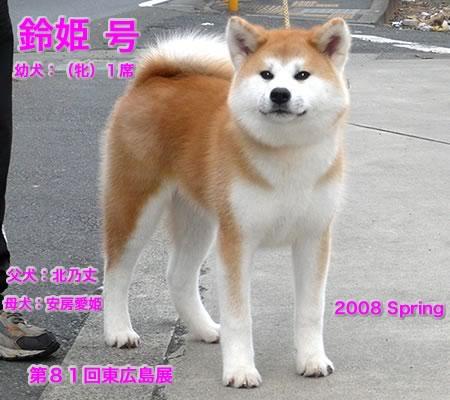 suzuhime308.jpg