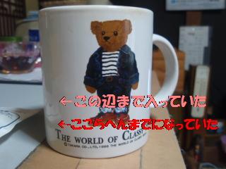 P4200762.jpg