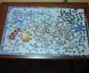 20080521195954.jpg