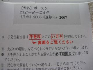 IMG_2154.jpg