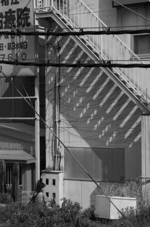 yuruigogo_080614-2