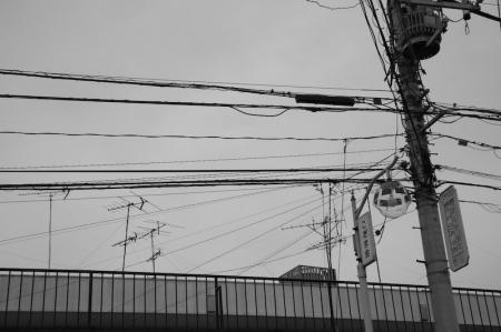 kouhokuku_080508-2