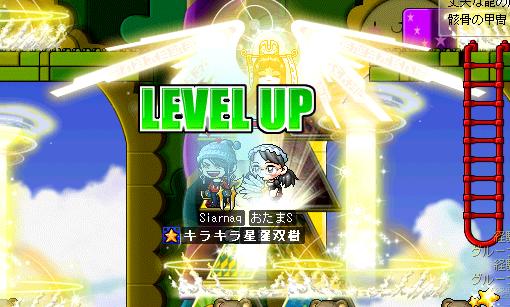 シャル155れべ!