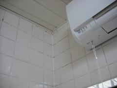 風呂掃除m1