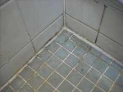風呂掃除m3