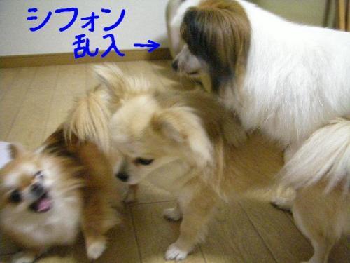 200806057.jpg