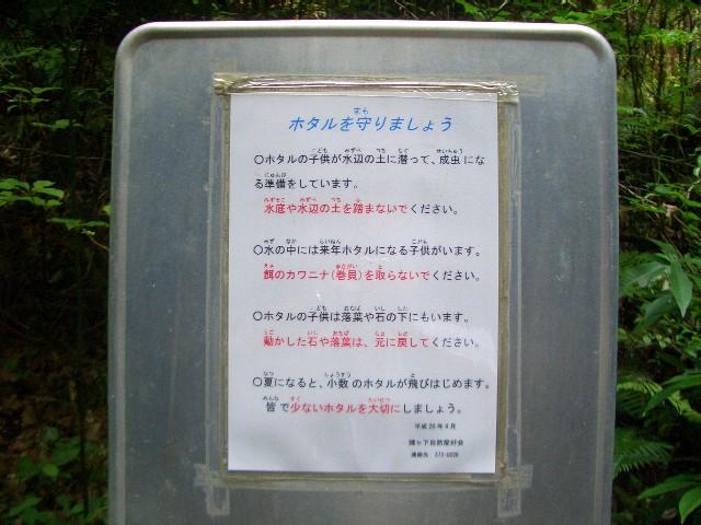 陣ヶ下渓谷4