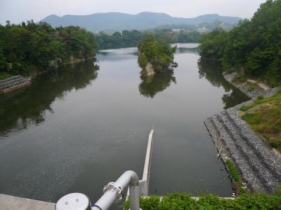 2008/05/19府中湖/北條池からの流れ込み