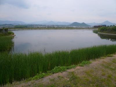 2008/05/19八ッ池