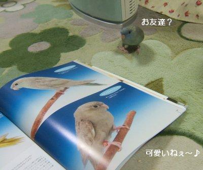 200601-2n.jpg