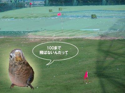 golfclub0705.jpg