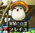 kinoko-080615.jpg