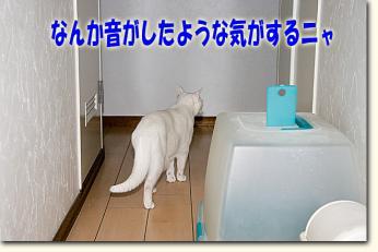 080424_01.jpg