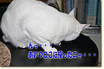 080427_02.jpg
