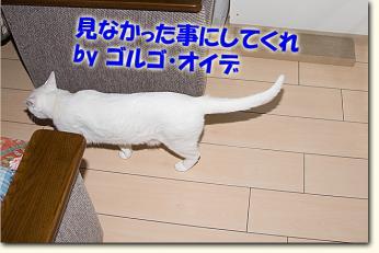080501_09.jpg