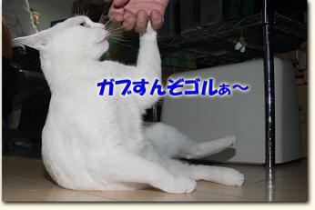 080502_07.jpg