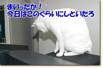 080510_071.jpg
