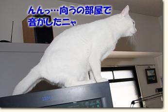 080511_01.jpg