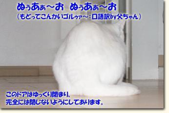 080511_03.jpg