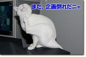 080520_09.jpg
