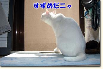 080530_04.jpg