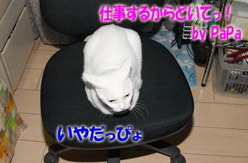 080703_04.jpg