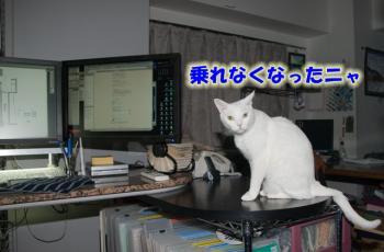080807_01.jpg