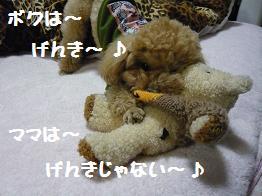 げんき~♪