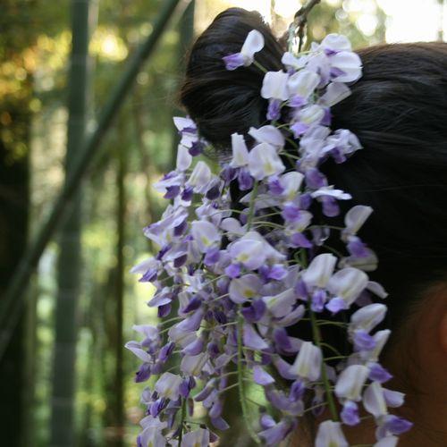 2008藤 髪飾り