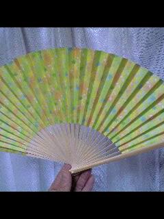 20080506sensu.jpg