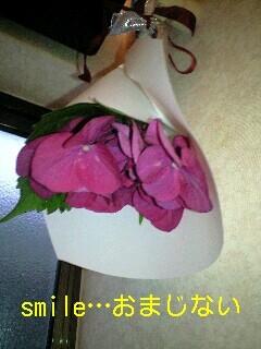20080605azisai.jpg