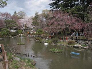 馬事公苑1