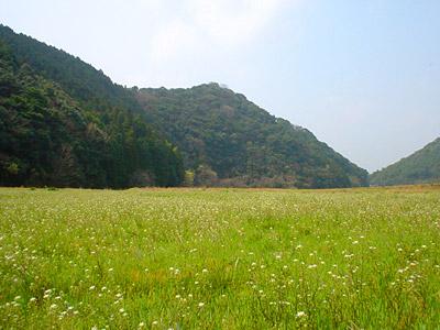 波佐見町の風景