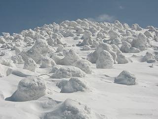 西吾妻の樹氷