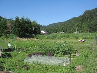 20080726-27生杉他 003