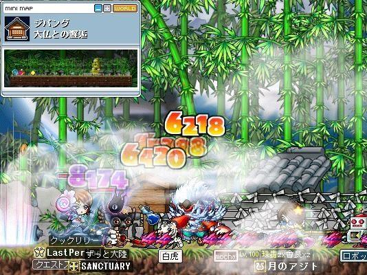 Maple0046543534.jpg