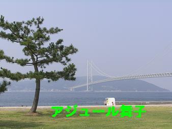 CIMG3158.jpg