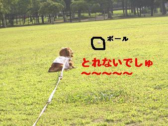 CIMG3269.jpg