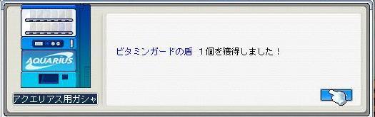 03131.jpg