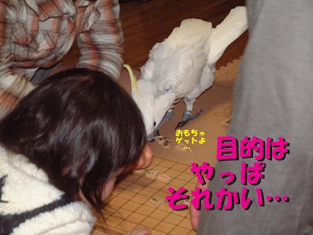 はさみ将棋3