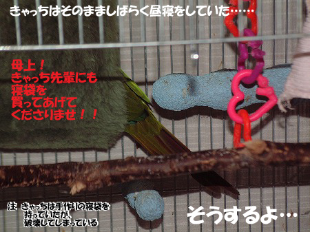 s-DSCF0008.jpg