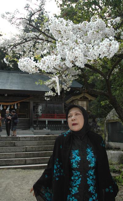 桜の花とサクラ