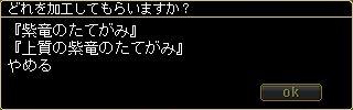 ss20080331_034022.jpg