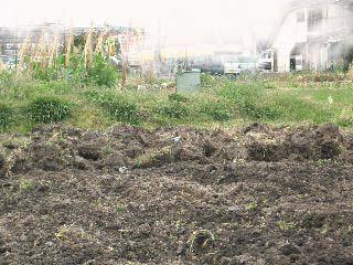 土を植えない場所に運んだ