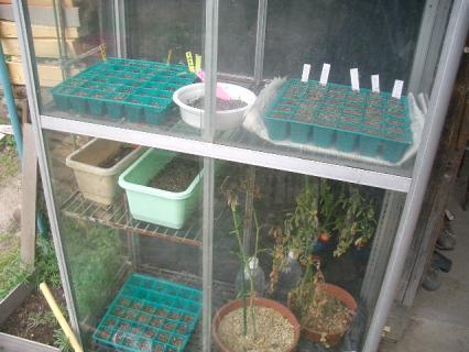 温室を利用