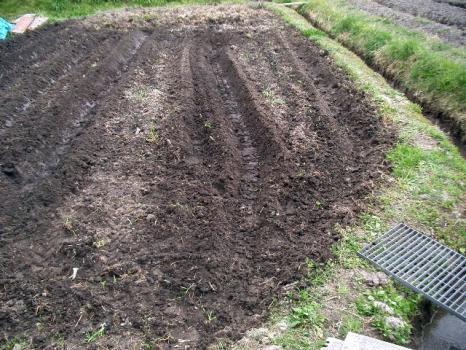 培土器をつけて畝立てをした