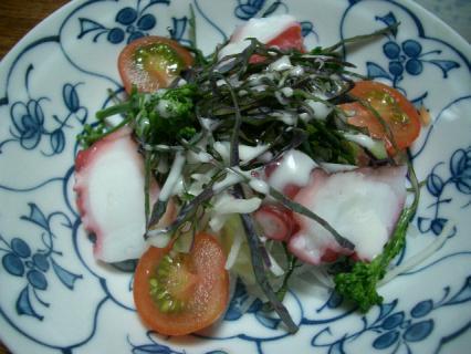 キャベツと蛸のサラダ