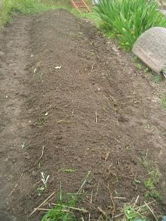 雑草も漉き込んでやったゾ