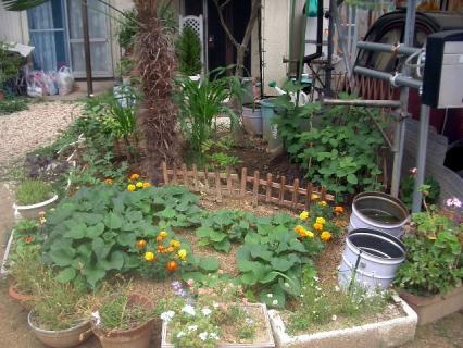 花壇と畑の融合!