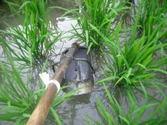 溝堀の道具